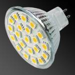 21 Led Cool White MR16